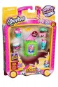 ASIN:B06XFVRR1R TAG:shopkins-5-pack