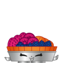 #FF_022 - Fifi Fruit Tart - Exclusive